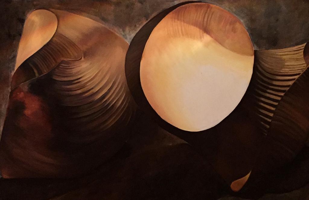 Leuchtende-Muschel-2015