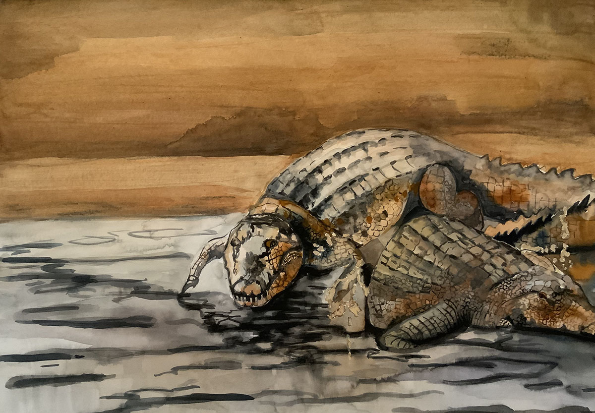 Ruhige-Krokodile