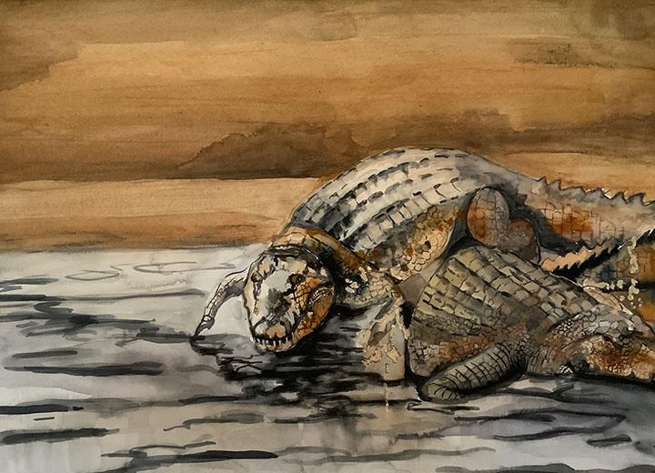 Ruhige-Krokodile_cut